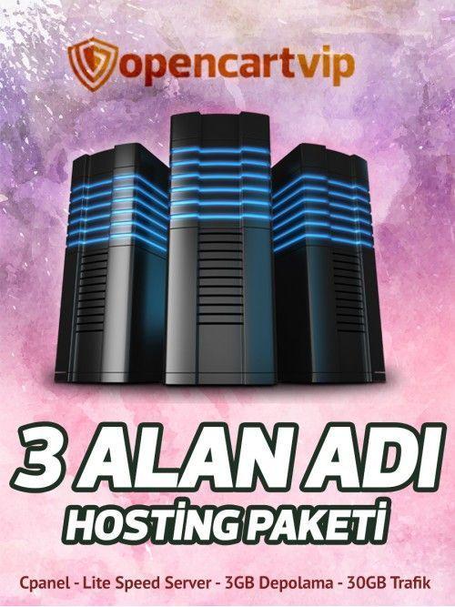3 Alan Adı Hosting Paketi